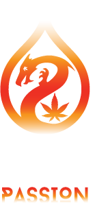 Dragon Elixir Elderberry -  www.dragonelixirs.com (cannabis,marijuana,420,smoke,tincture,weed)